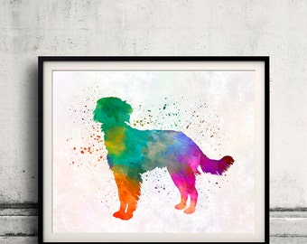 Blue Picardy Spaniel 01 in watercolor - Fine Art Print Poster Decor Home Watercolor Illustration Dog - SKU 2269