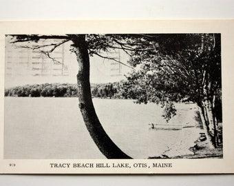 Otis Maine, Tracy Beach Hill Lake Postcard 1956 / vintage Otis Postcard / Maine Postcard / cottage postcard / camp postcard