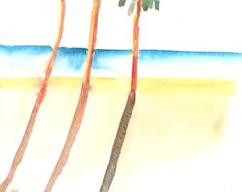 Digital Download Palm Tree Shadows