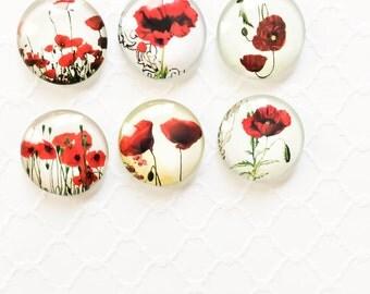 Set of 6 Knobs ~ Decorative Knobs ~ Cottage Dresser ~ Flower Knobs ~ Girls Dresser Knobs ~ Paris Decor ~ Garden Knobs