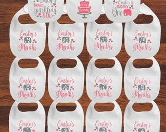 Personalized Baby's First Year Milestone Bibs