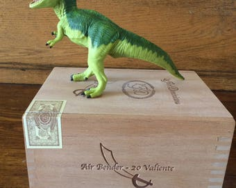 Dinosaur box for the kids to keep their small stuff in - very popular