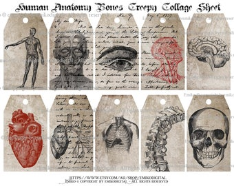 80% Off Human Anatomy Collage Sheet,Creepy Collage Sheet,Skull Bone Printables,Anatomical Digital,Anatomy Heart Digital,Gothic Digital Tag