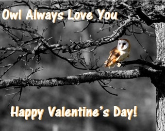 valentines card - owl valentines card - love you card - valentine card - funny card - valentine day card - owl card - owl