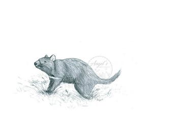Rustic Tasmanian Devil: 20% of all proceeds donated to the Australian Reptile Park's, Devil Ark Program