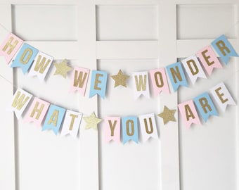 How We Wonder What You Are Banner / Twinkle Twinkle Little Star Banner / Gender Reveal Party / Gender Neutral Baby Shower / Boy Girl Decor