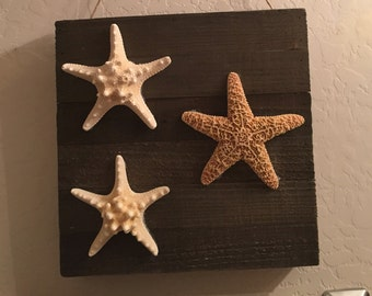 Starfish |Coastal Hanging| Coastal Decor| Home Decor| Starfish Decor