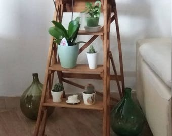 Ladder wood vintage