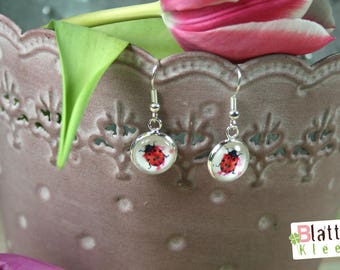 spring-fresh earrings with ladybirds