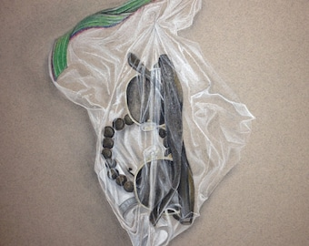 Objects In A Plastic Bag