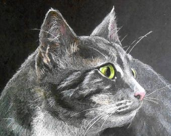 "Tabby Cat Portrait PRINT from my Original Colored Pencil Drawing, 8"" x 10"", Gray Striped kitty"