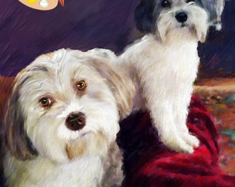 Havanese Dog Portrait - Havanese Dog Painting from your Photo - Portraits-by-Nc