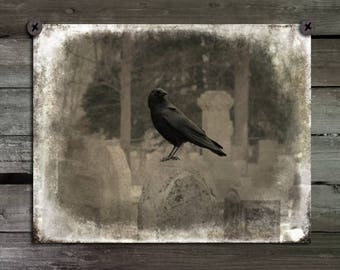 Raven Photograph, Aged Brown Image, Vintage Art, Crow Print, Blackbird , Gothic Wall Decor, Bird - Then There Was Crow