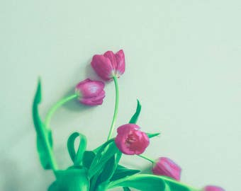 Flower Photography - Spring Art - Minimalist Art - Tulip Photograph - Bouquet - White Pink - Floral Art Print - Home Decor - Dreamy Art