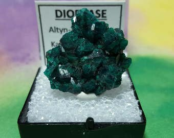 DIOPTASE Top Quality No Matrix Bright Teal Blue Green Crystal Mineral Specimen In Perky Box From Kazakhstan