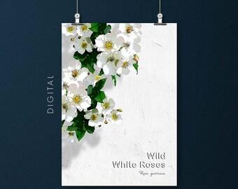 Wild White Roses Download Climbing Rose Print Floral Summer Wall Art Green Pink Yellow Botanical Room Decor Nature Flower Garden Printable