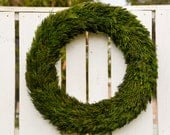 """Christmas Sale!, 25 % OFF, 24"""" Preserved Cypress Wreath, Christmas wreath, Christmas greenery, holiday greenery, holiday wreath,winter"""