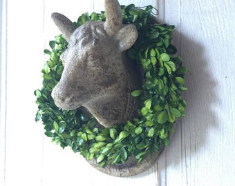 Cow Cameo with Preserved Boxwood Wreath