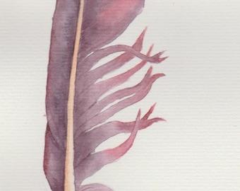 Violet feather -- original watercolour painting