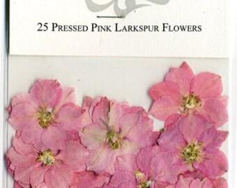 Pink Larkspur Pressed Flowers - pack of 25  1 inch diameter