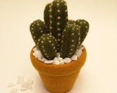Needle Felted Cactus. Reserved for craftfairgirl.