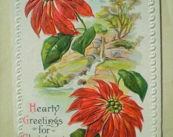 Merry Christmas - 1915 - Joplin & Hume, Missouri - Antique American Postcard - Poinsettia