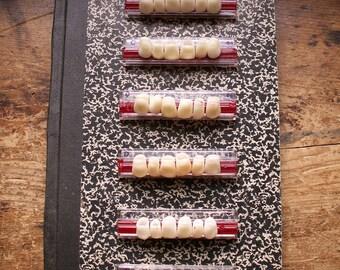 Vintage Teeth Sample Plates - Dentist Sample Cards - Six Available