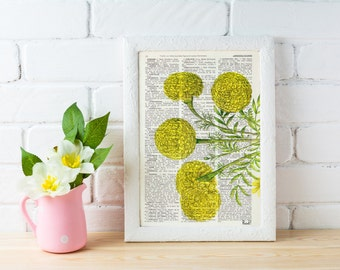 Summer Sale Wall hanging Tagetes or African marigold flower Botanical studio print on Dictionary giclee  wall decor yellow BFL074