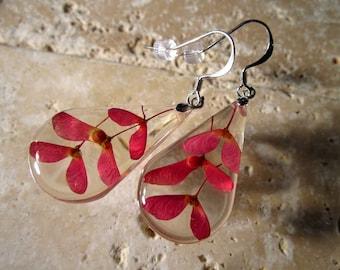 Maple seed teardrop resin earrings, Maple, Leaf jewelry, Plant jewellery, botanical jewelry, nature jewellery, red, surgical steel