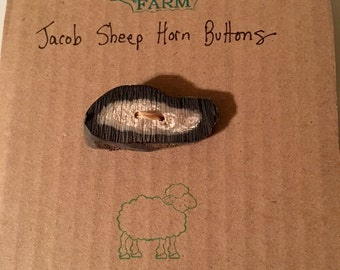 Rustic Natural BUTTON Handmade of SHEEP HORN from Jacob Sheep on our Farm - Free Ship!