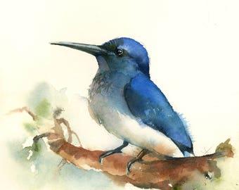 Blue Bird print, watercolor painting of bird,bird art, modern wall art, bird illustration