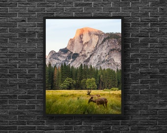 Deer Photo - Mountains Print - Mountain Forest - Mountain Photography - Wild Nature Photo - Vertical - Mountain Wall Art - Nature Wall Decor