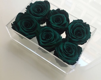 6 Eternity Roses in a Lidded Lucite Box