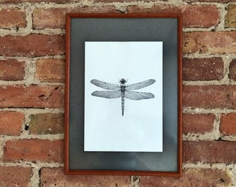 Dragonfly Art Print Dragonfly Illustration Dragonfly drawing home decor dragonfly print wall art fine art print