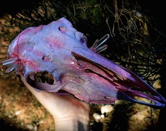 Faerieland: Embellished Sheep Skull