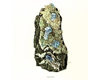 1970 Blue Celestine Crystals Print. Minerals Wall Art. Vintage geology Illustration.