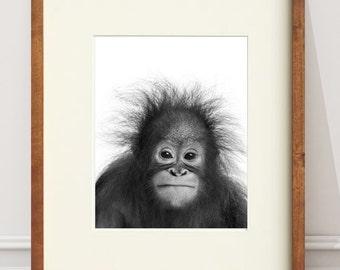 Baby Animal Orangutan PRINT, Nursery Wall Decor, Baby Safari Print, Nursery Wall Art, Black and White Animal Poster