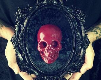 Red Skull / / Red Skull