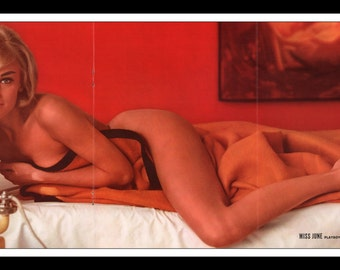 "Mature Playboy June 1963 : Playmate Centerfold Connie Mason Gatefold 3 Page Spread Photo Wall Art Decor 11"" x 23"""