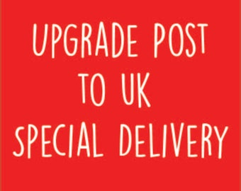 Delivery upgrade - Special delivery next day by 1pm