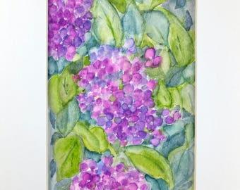 Hydrangea Watercolor, Original Watercolor, Original Painting, Original Art, Home Deco
