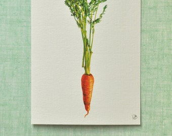Reproduction carotte à l'aquarelle