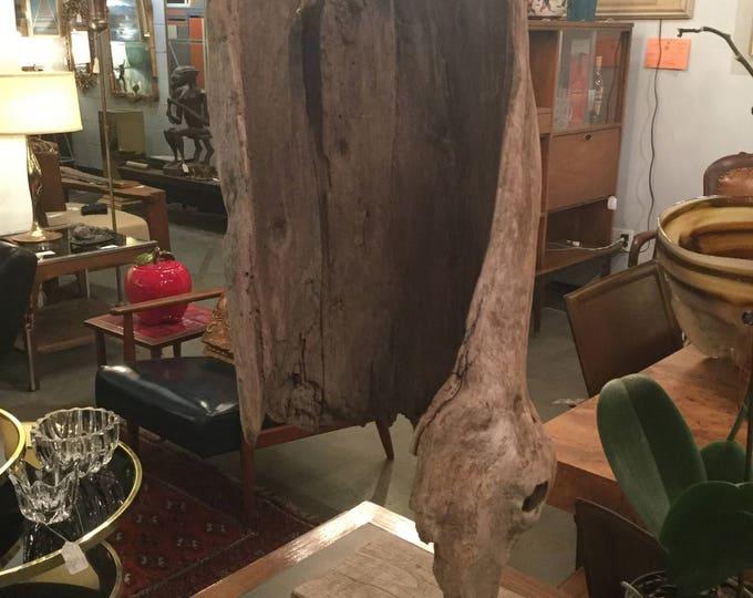Signed Driftwood Sculpture