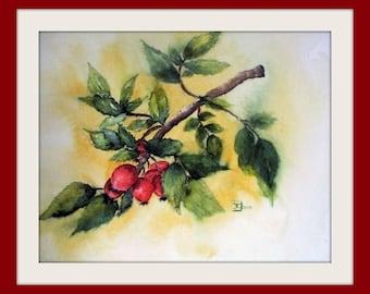 Original painting - Watercolor - unique - Rose Hips - Size 30x40 cm