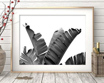 Banana Leaf Art, Leaf Print, Tropical Printable Art, Tropical Leaves, Palm Leaf Print, Tropical Wall Art, Tropical Print, Palm Digital Print
