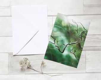 Nature photo greeting card (nature, greeting card, birthday card, photo, photo print, art, green)