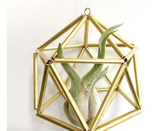 Gold Sphere Himmeli Geometric Air Plant Holder • Brass • Scandinavian • Christmas • Minimalist • Modern • Metallic • Tillandsia • Ornament •