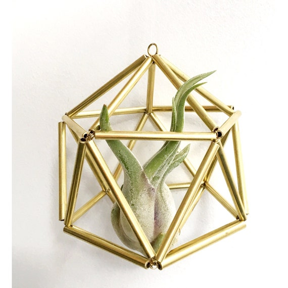 Gold sphere himmeli geometric air plant holder brass for Geometric air plant holder