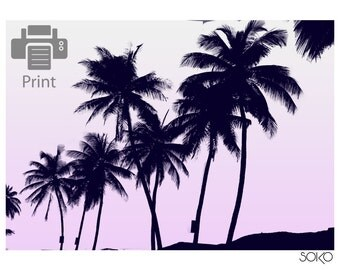 Download Palm in black and white and a pink sky, palm leaf, print, black and white, tropical, Scandinavian decoration