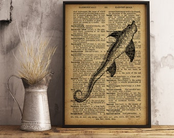 Antique catfish print, Nautical wall art Vintage style Art Decor Coastal wall art, beach house decor  R16